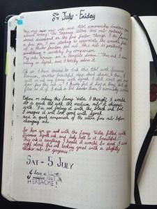 Pilot Penmanship sample writing